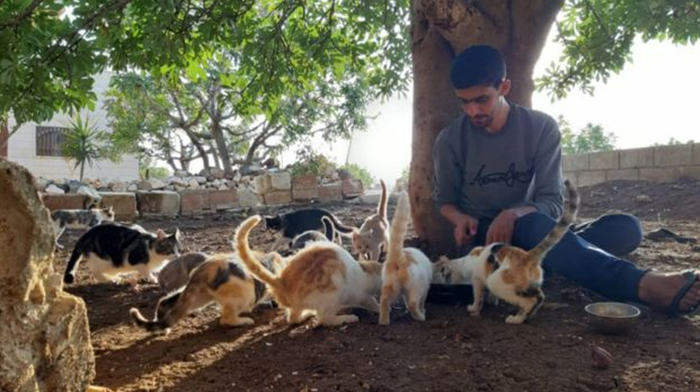 One Man Stays Behind in abandoned Syrian City to Take Care of Cats
